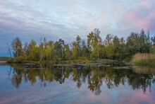 Watercolored Sunset Autumnal R...