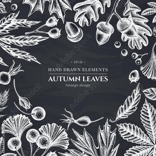 Monochrome design with chalk fern, dog rose, rowan, ginkgo, maple, oak, horse chestnut, chestnut, hawthorn