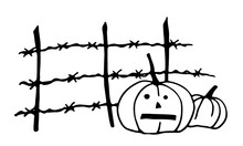 There Are Two Lantern Pumpkins By The Barbed Wire Fence. Halloween. Vector. Doodle Style.