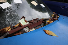 放置され朽ちたスポーツカー abandoned Car