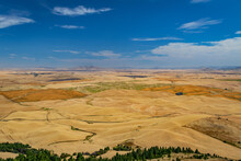 Amazing Yellow Hills. Plowed Fields, An Incredible Drawing Of The Earth. Steptoe Butte State Park, Eastern Washington, In The Northwest United States.