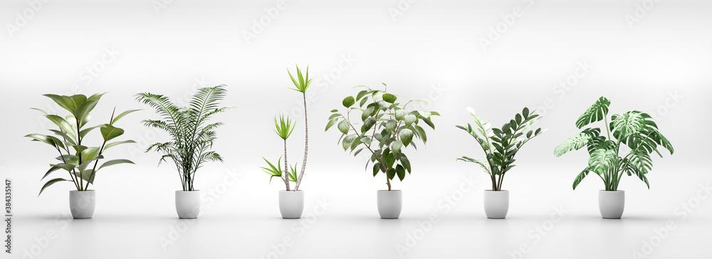 Fototapeta Set of tropical green plants in pots. Home decoration assets