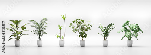 Fotografie, Obraz Set of tropical green plants in pots. Home decoration assets