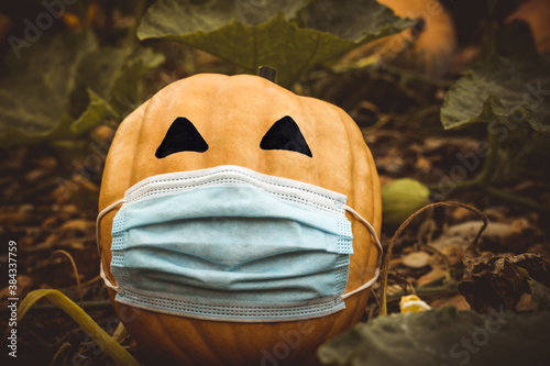 Obraz natural halloween pumpkin masked by the coronavirus pandemic, covid 19 - fototapety do salonu