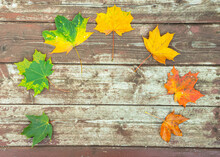 Colorful Autumn Leaves On The Old Wooden Background
