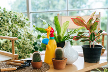 Colorful Home Gardening Equipm...