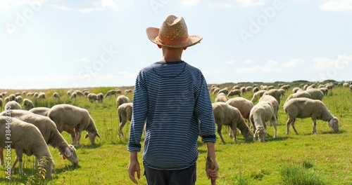 Tela Rear on Caucasian small teen boy in hat walking outdoor in field and looking after animals