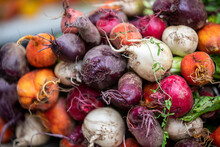 Colorful Radishes On Display A...