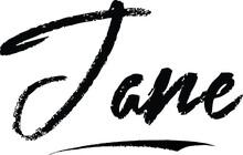 Jane Female Name Modern Brush Calligraphy On White Background