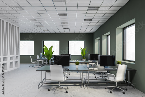 Modern white and gray open space office interior Wallpaper Mural