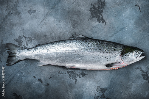Whole raw salmon on grey background, top view with space for text Wallpaper Mural