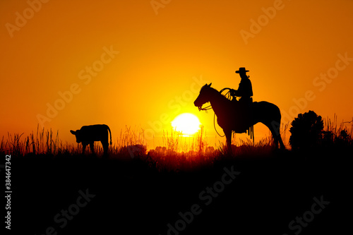 A silhouette of a working cowboy against an evening sunset getting ready to rope a stray calf.
