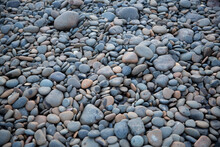 Rocky Texture Round Grey And Tan River Rocks In A Creek Bed All Gathered Together