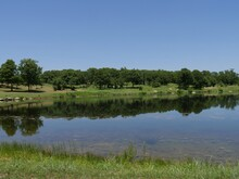 Trees Mirrored In The Lake Waters On A Beautiful Day At The Chickasaw National Recreation Area In Davis, Oklahoma