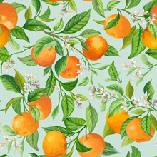Vector Mandarin Floral Background, Seamless Fruit Pattern, Citrus Fruits, Flowers, Leaves, Branches Texture