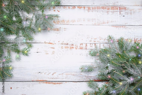 Coniferous spruce branches  with snow and colored ligon white abraded boards Canvas Print