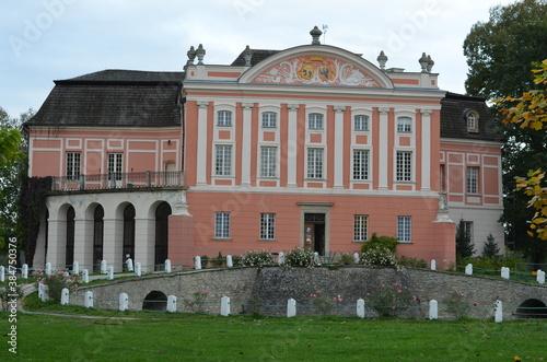 Obraz Kurozwęki Pałac , Kurozwęki - fototapety do salonu