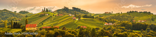 Fototapeta South styria vineyards landscape, near Gamlitz, Austria, Eckberg, Europe. Grape hills view from wine road in autumn obraz