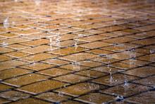 Raindrops On Street Tile Wet F...