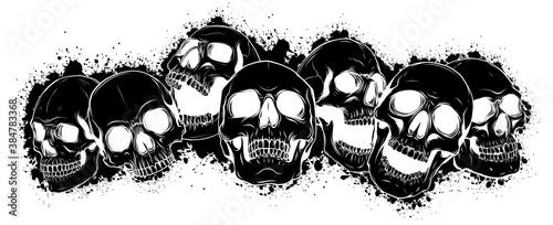 Fototapeta black silhouette vector skull and crossbones