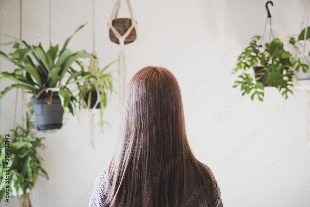 Fototapeta 観葉植物に囲まれた、秋冬ニット服を来た綺麗な髪の女性の後ろ姿