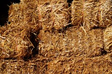 Bales Of Hay At A Farm In Autumn