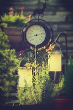 Garden Decor With Antique Thermometer, Lantern And Lavender Flower In The Evening Sun