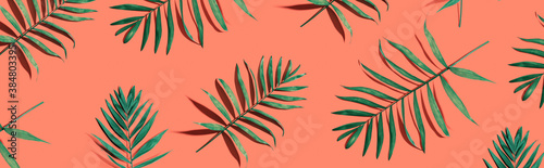 Fototapeta Tropical palm leaves from above - flat lay obraz