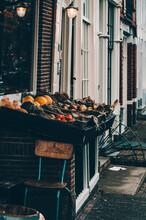 Amsterdam Vibes