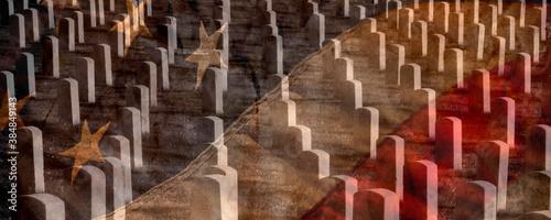 Fotografija Arlington Cemetery with Faded Flag