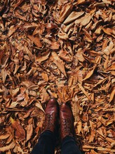 View From Above Of Brown Boots...