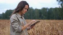 Farmer Woman Working With Tabl...