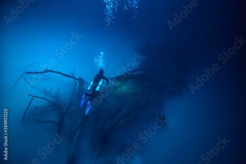 cenote angelita, mexico, cave diving, extreme adventure underwater, landscape un Wallpaper Mural