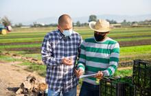 Hispanic Farmer In Protective ...
