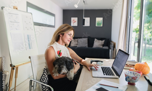 Mature woman with dog working indoors in home office in container house in backyard Wallpaper Mural
