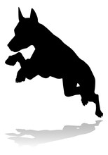 A Detailed Animal Silhouette O...