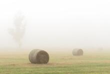 Hay Bales In A Foggy Field In ...
