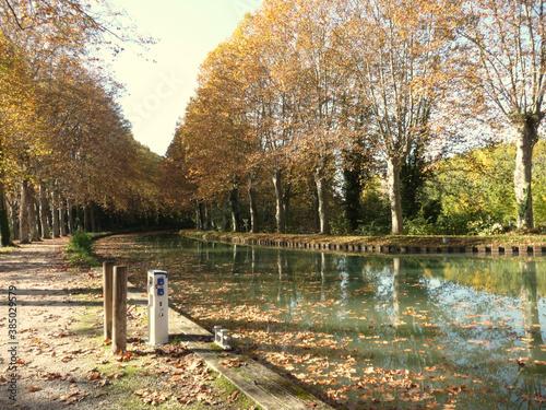 Fotografía Automne au bord du Canal Latéral à la Garonne, continuation du Canal du Midi, ju
