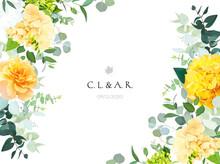Yellow Hydrangea, Mustard Rose, Peony, White Iris, Orchid, Spring Garden Flowers