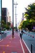 Paulista Avenue São Paulo Brasil