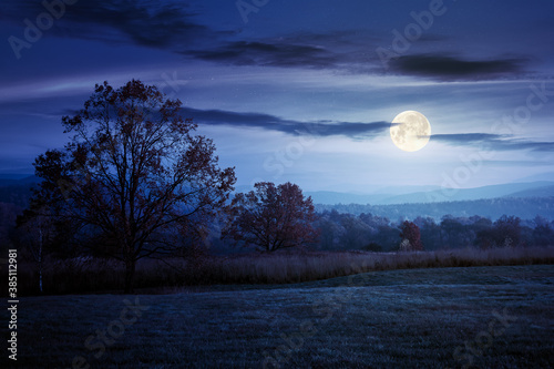 Photo gorgeous countryside at dawn in autumn at night