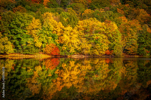 Trees on a hillside turning colors in the fall and reflecting off of the Alleghe Canvas Print