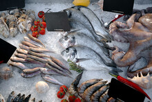 Fresh Seafood With Price Tags ...