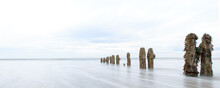 Old Weathered Wooden Posts In ...