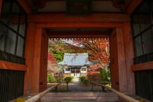 お寺の赤い山門と紅葉...