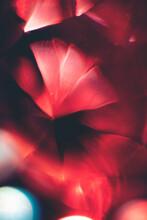 Red Light Through Cut Glass Crystal