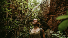 Woman Trekking In Forest Betwe...