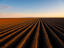 Ploughed Field At Sunset