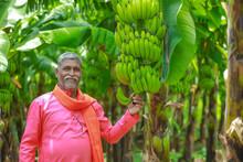 Happy Indian Farmer Holding Ra...