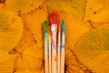 Five Brushes For Painting On C...